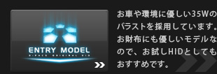 ENTRY MODEL