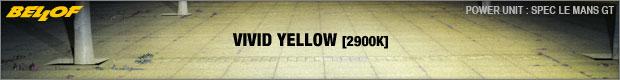Vivid Yellow [2900K]
